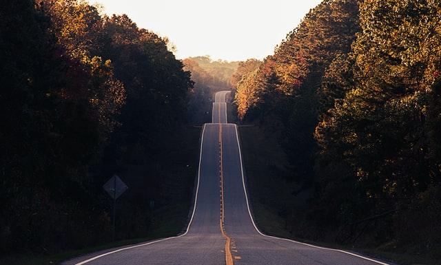 asphalt road between trees photo